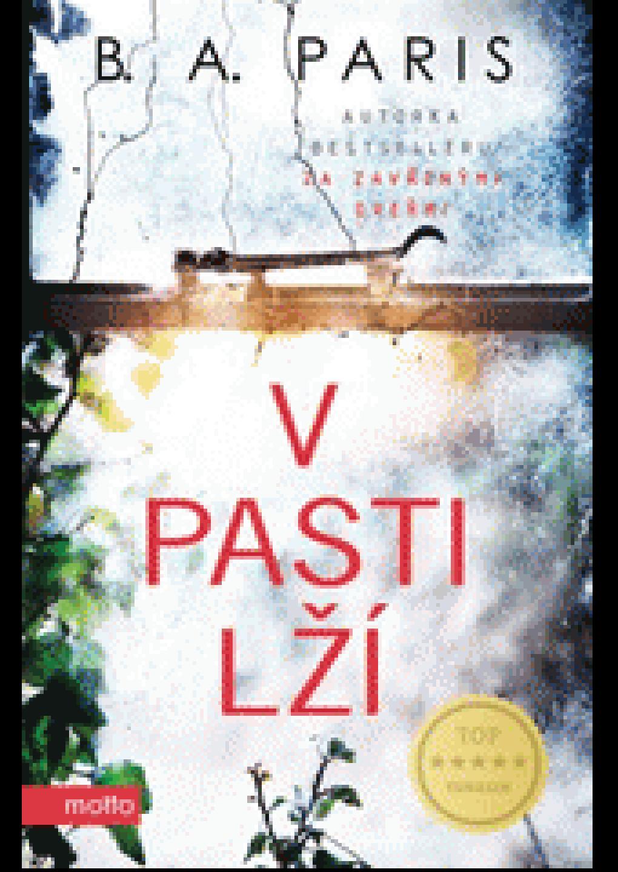 v_pasti_lzi.png